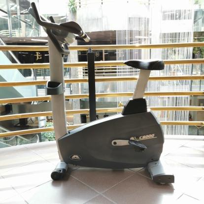 Johnson rower stacjonarny pionowy C8000 używany